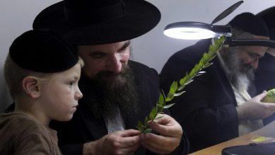 Dạy con thông minh theo kiểu Do Thái